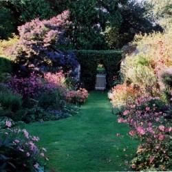 Tregoose Garden