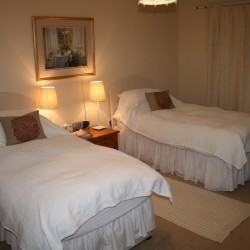 Braefield Bed and Breakfast twin guest room