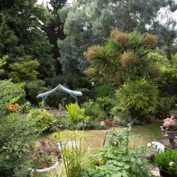 Carlton Court B&B gardens