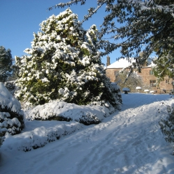 Johnby Hall B&B in the snow