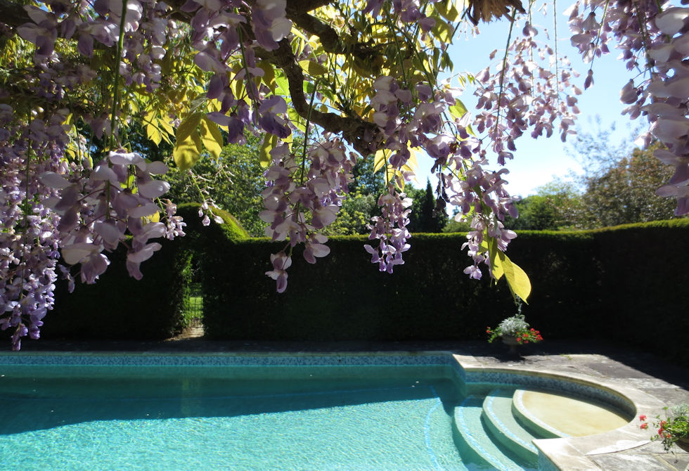 Wolsey lodges with swimming pools