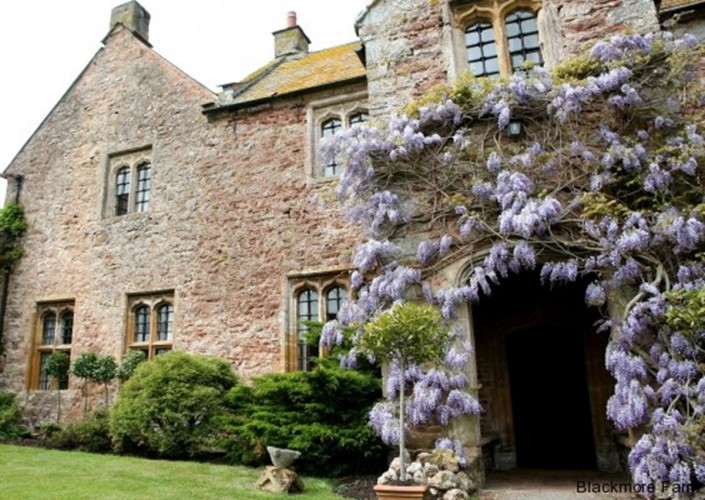 Blackmore Farm Bed and Breakfast exterior and wisteria