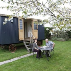 Shepherds Hut Blackmore Farm Bed and Breakfast