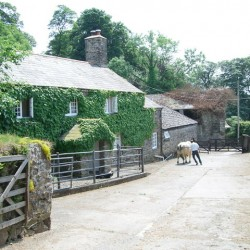 Burnville House, the farmhouse Farmyard