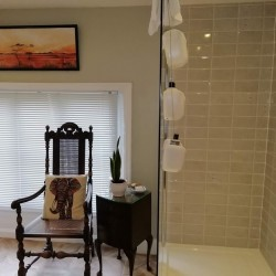 Carricks at Castle Farm B&B guest shower