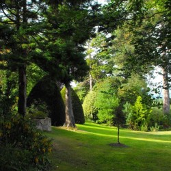 Firgrove Country House B&B garden