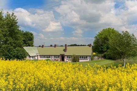 Glenlohane Pink cottage