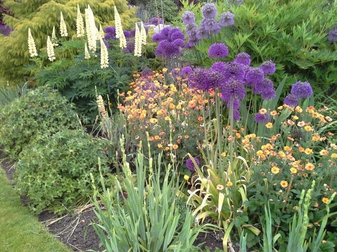 Greenhead Farm B&B gardens