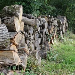 Grove Farm B&B firewood logs