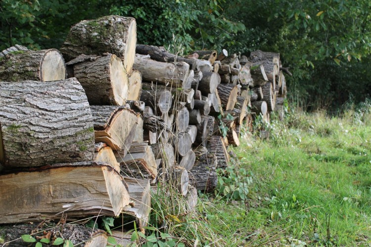 Grove Farm B&B firewood logs