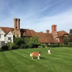 Long Crendon Manor B&B - garden