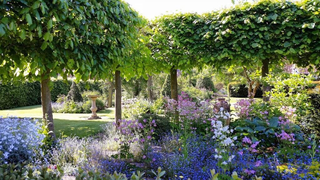 Manor House Farm B&B - lime trees and borders