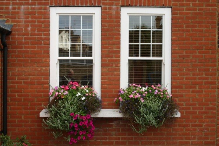 One Fanthorpe Street bed and breakfast window boxes