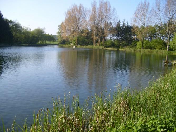 Rectory Farm B&B grounds