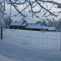 The Barn B&B in snow