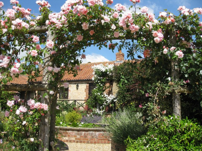 The Barn Rose Archway