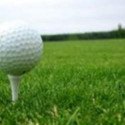 Warwick Hall Golf Tee