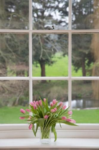 Wrackleford House Vase Tulips