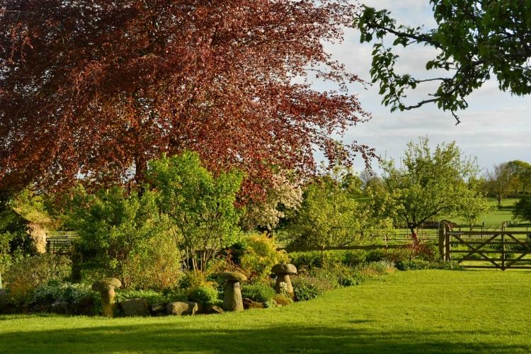 Court Farm Church Stretton garden
