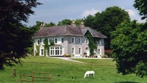 Glenlohane house and horse