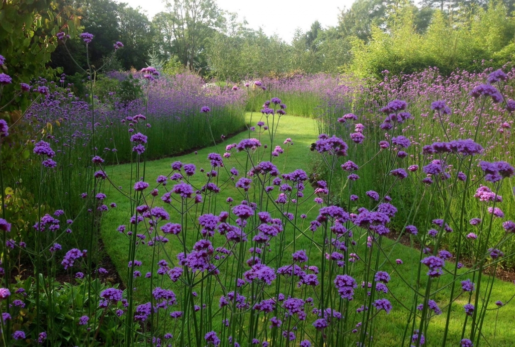 Coolaught Gardens, County Wexford