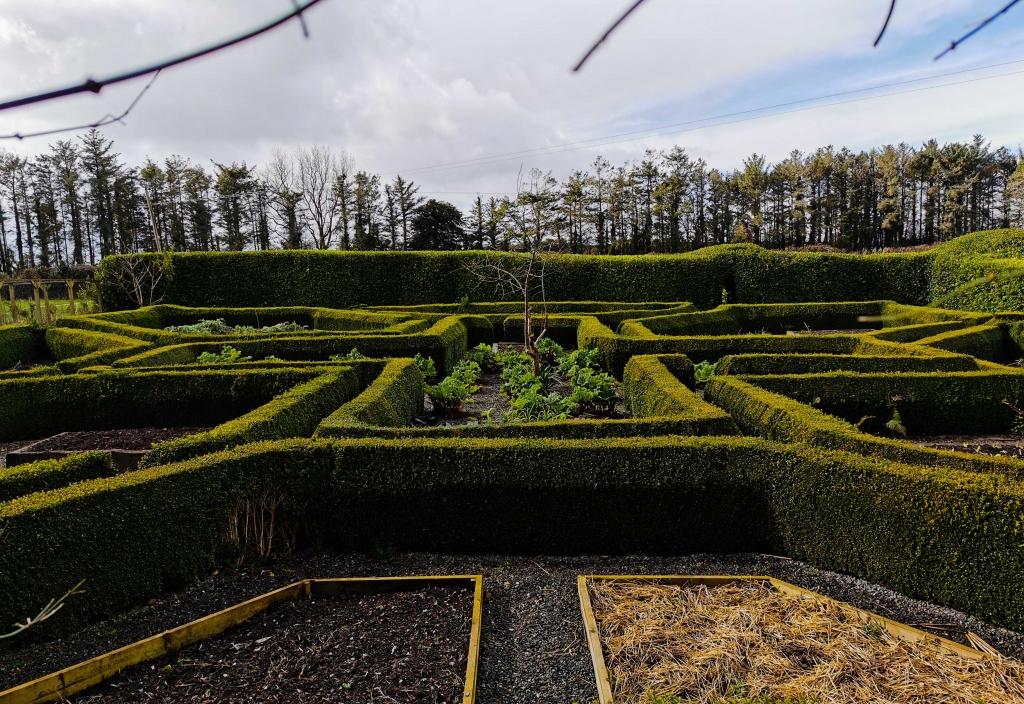Kilmokea garden maze