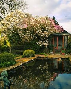 Kilmokea Bed and Breakfast Japanese Garden