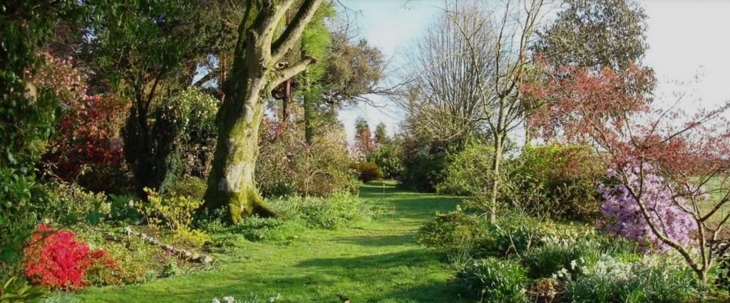 Tregoose Gardens